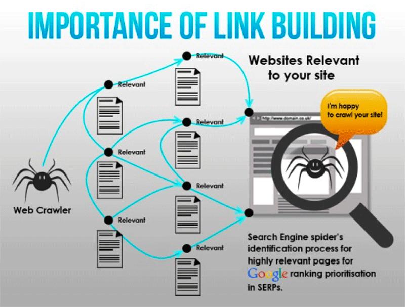 Infographie importance du netlinking dans le référencement naturel